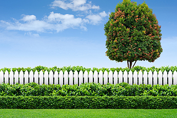 White picket Fence in Algonquin IL in front of a large tree over a cloudy, blue sky